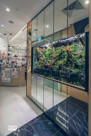 Beautiful aquarium doubles up as a partition in a retail store. This aquarium is custom-made by N30 Singapore.