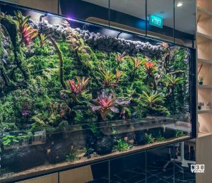 Retail shop using aquarium for interior decor. Aquarium designed and custom-made by N30 Singapore
