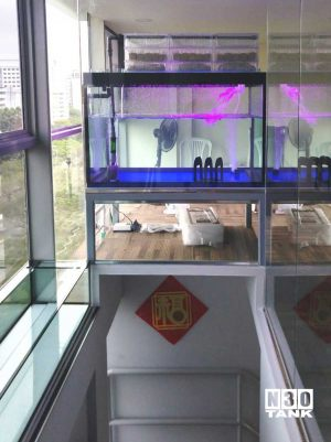 """MTL-810: N30 Tank 46 6/8"""" (L) x 32"""" (W) x 30"""" (H) fresh water aquarium set with N30 glass base OHF filtration. 15mm base with 12mm sides. This aquarium is mounted against a glass wall above the stairway, and greets visitor walking up the stairs."""