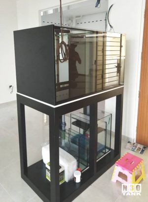 MT-815: N30 Tank 42 inch (L) x 24 inch (W) x 24 inch (H) overflow sump set (Freshwater set up). This tank is eventually wrapped into a full height aquarium set. Glass thickness 10mm all round.