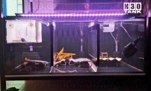 MT-820: Floor aquarium. Fish tank on low-profile steel stand. Custom-made by N30 Tank.