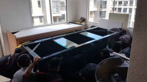 7 Our team prepares to lift the heavy fish tank onto its cabinet stand