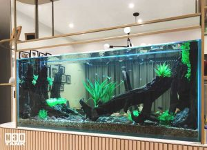 Wish to keep an aquarium but do not know how to make it beautiful? No worries. Leave all the aqua scaping work to N30. Our creative aquarium scaping team will make your aquarium beautiful in no time.