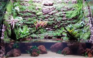 "scaping-004 - N30 Tank 5ft x 2ft x 42"" h Scaping and Tank Set"