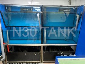 Chiller Seafood Tank custom-built by N30 Tank