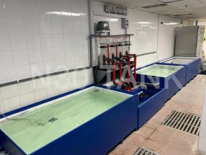 Filtration System for Seafood Storage Tank custom-built by N30 Tank