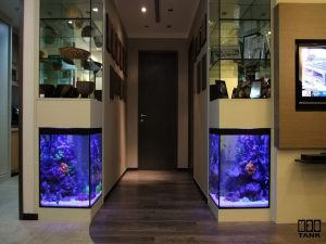 Side Wall Tanks - Pillar Aquarium with glass cabinet on top. Custom-made by N30 Tank.