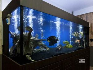 Unique Aquariums Ada Style Aquarium Cabinet N30